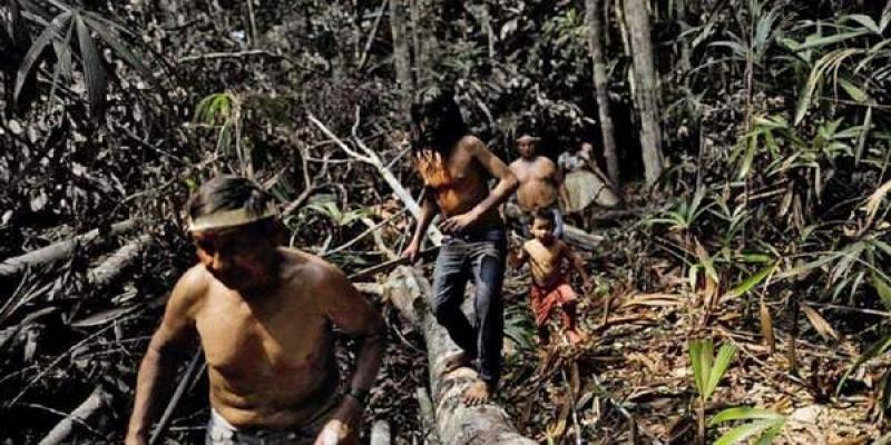 Quase um milhão de pessoas na Amazônia vive no escuro, indica estudo
